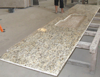 Prefab Santa Cecilia Granite Kitchen Countertop